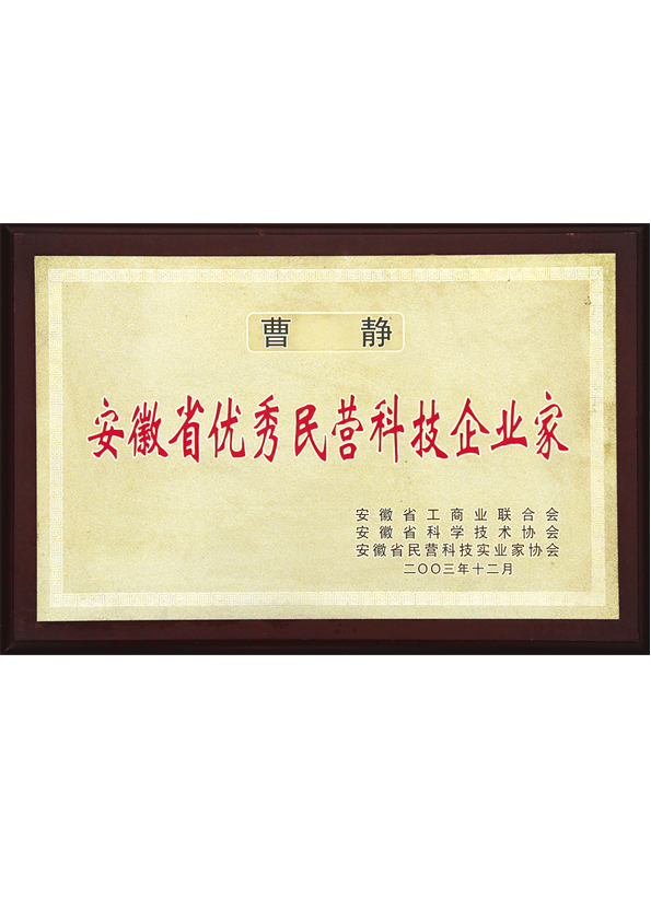 安徽省优秀民营企业家